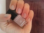 559 Frenzy Chanel Le Vernis